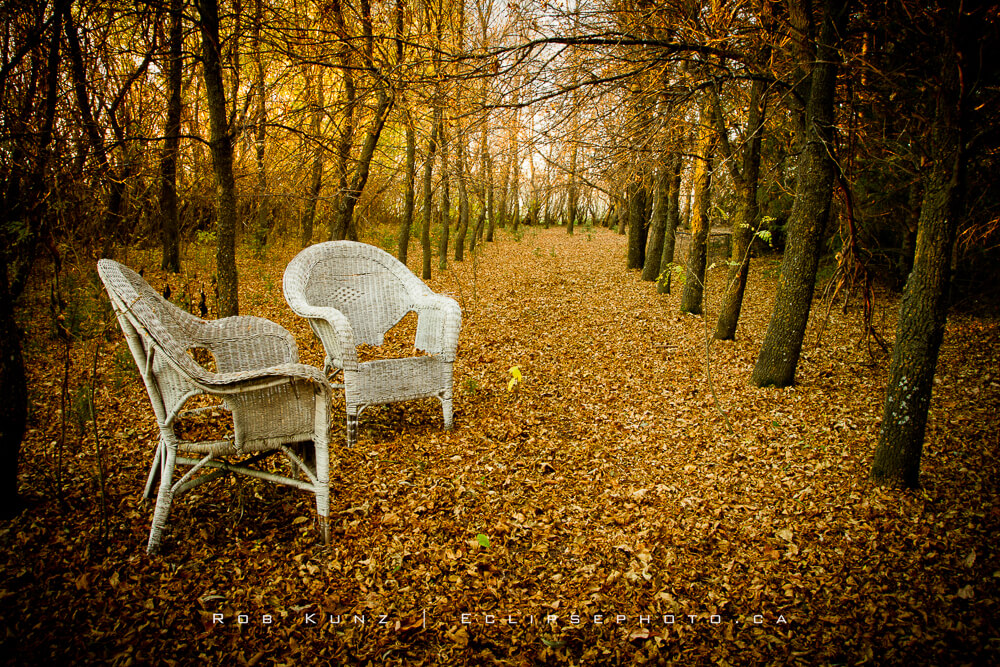 Autumn Seating For Two